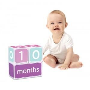 PEARHEAD BABY AGE MILESTONE BLOCKS - pink, purple & lime